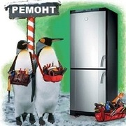 Быстрый и качественный ремонт холодильников ;  мировых производителей: